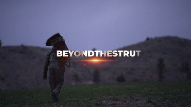 Montana • Beyond the Strut