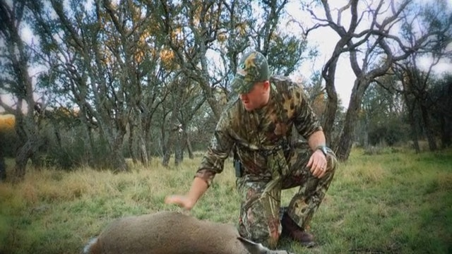 Our Land, Part 2 • Whitetails in Texas
