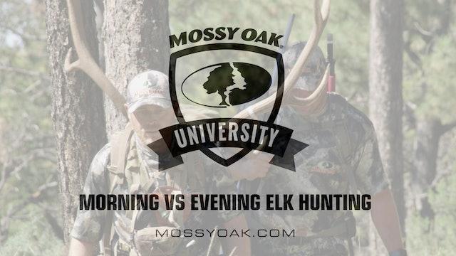 Morning vs Evening Elk Hunting • Mossy Oak University