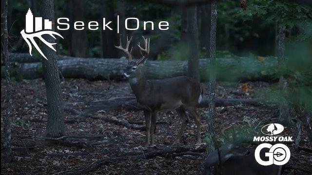 Tops  • Seek One