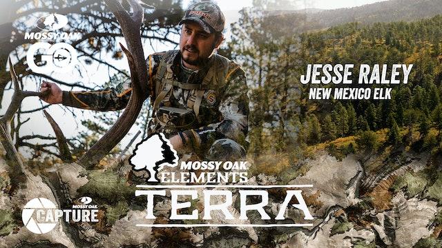 Jesse Raley New Mexico Elk • Terra