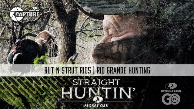 Rut N Strut Rios • Rio Grande Hunting...