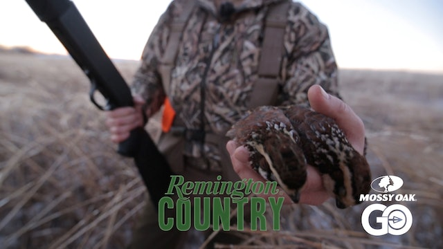 Remington on the Wing • Remington Country