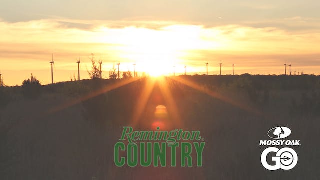LA Hogs & TX Turkeys • Remington Country