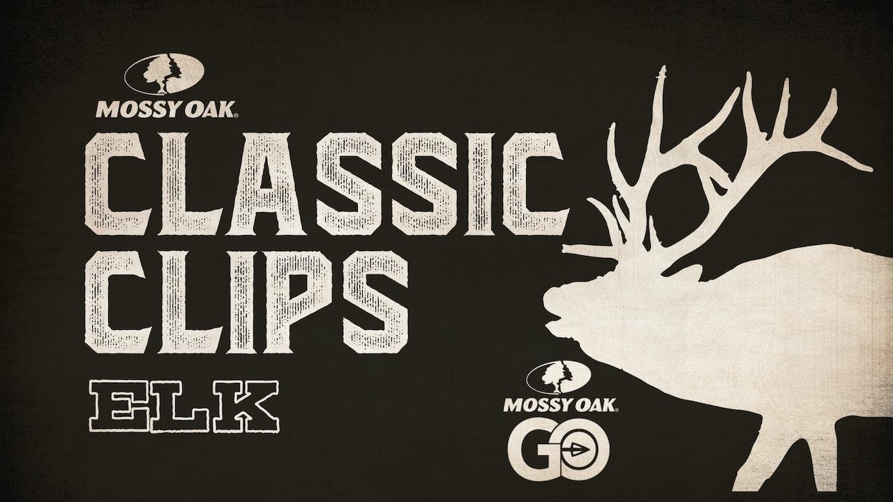 Classic Clips Elk