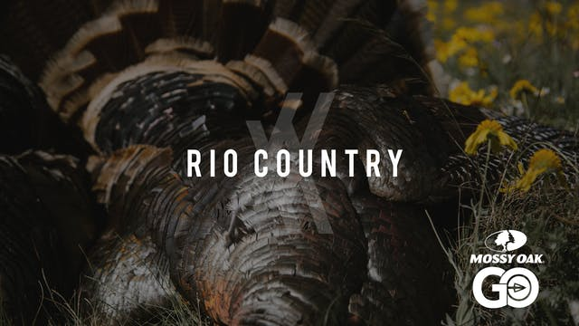 Rio Country • UNDIVIDED