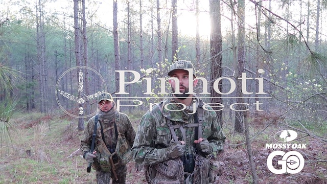 Straight From The Limb Gobbler • Pinhoti Project Day 26