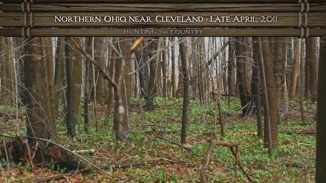 The Hope List • Bucks and Birds in Ohio