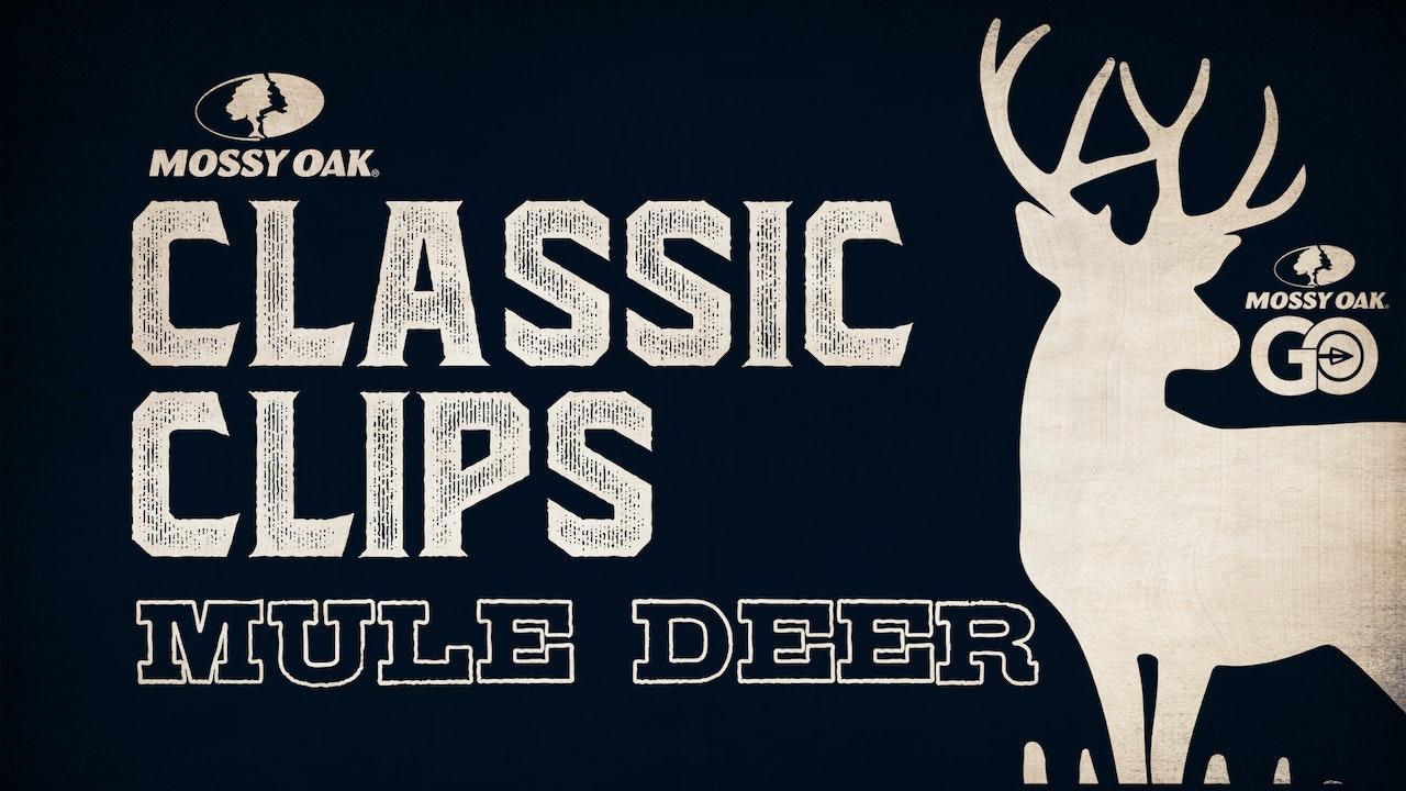 Classic Clips Mule Deer