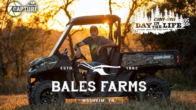 Barry Bales • Day in the Life