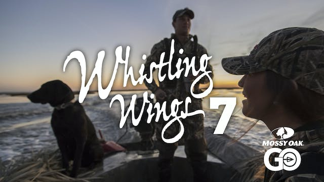 Whistling Wings 7