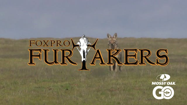 FOXPRO 1202 California • Furtakers