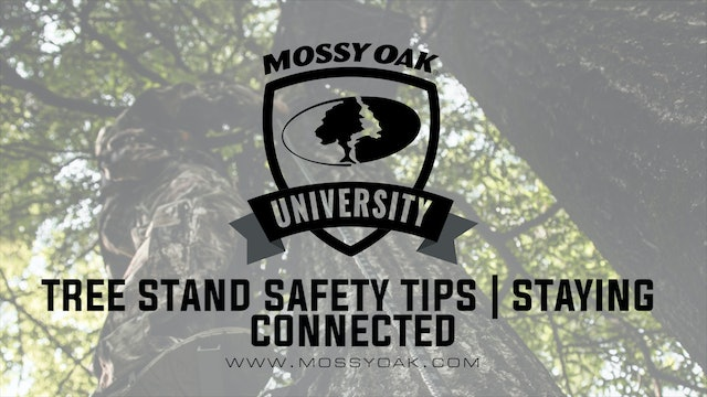 Tree Stand Safety Tips • Staying Connected