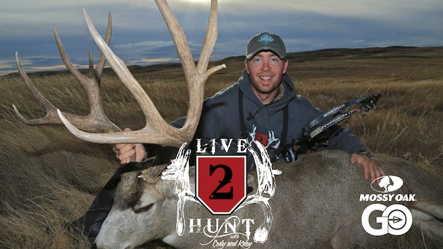 Keeping the Streak Alive • Live 2 Hunt