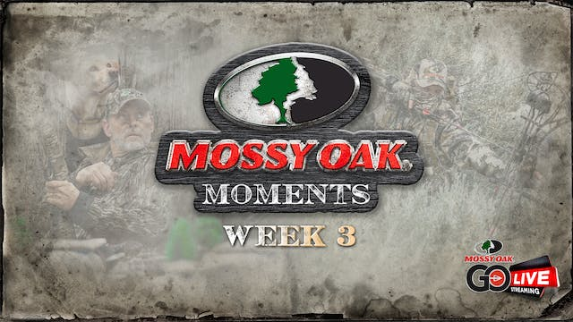 Live: 9.21.2020 Mossy Oak Moments Replay