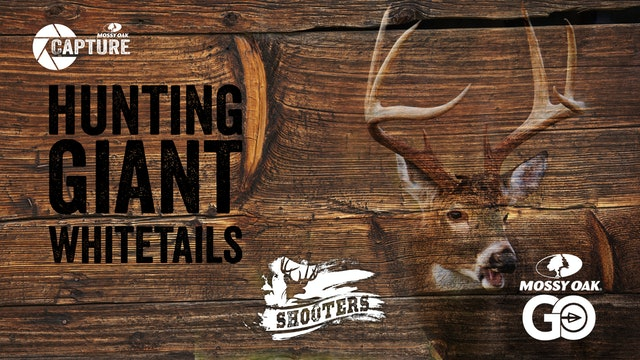 Hunting Giant Whitetails • Shooters