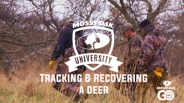 Tracking & Recovering Deer • Mossy Oak University