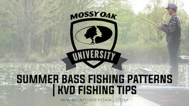 Summer Bass Fishing Patterns •KVD Fishing Tips