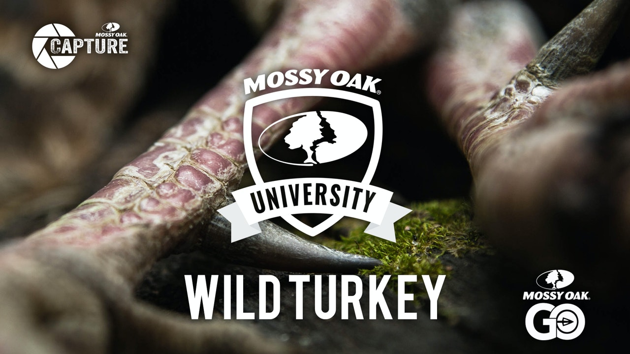 Turkey • Mossy Oak University