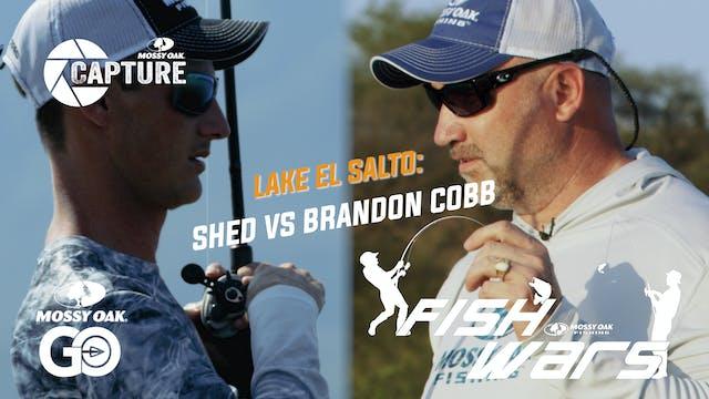 Fish Wars • Shed vs Brandon Cobb