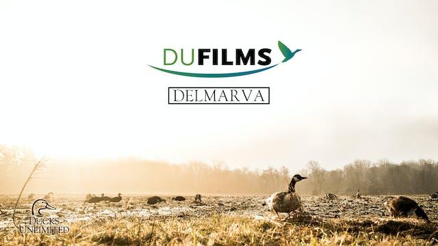Delmarva • DU Films