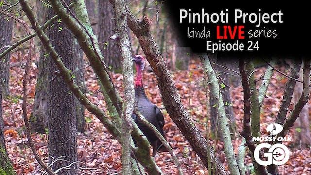 Kinda Live • Episode 24 • Pinhoti Pro...