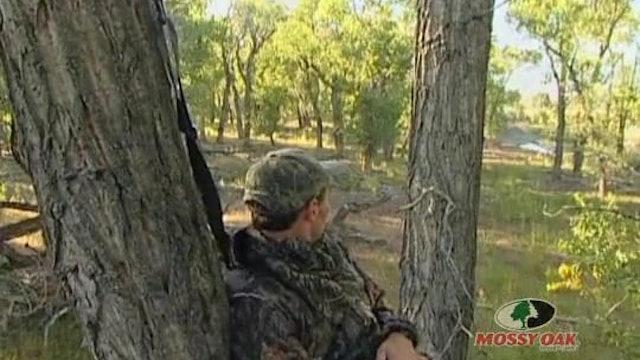 Blind Luck • Waterfowl in Arkansas