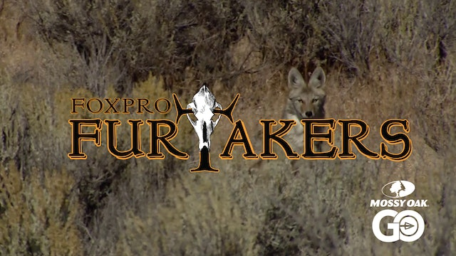 FOXPRO 1206 Nevada • Furtakers