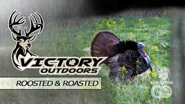 Roosted & Roasted • Victory Outdoors