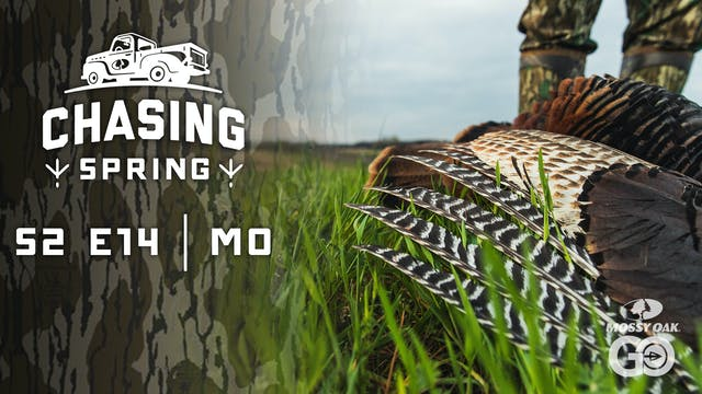 Ep 14 · MO · Chasing Spring