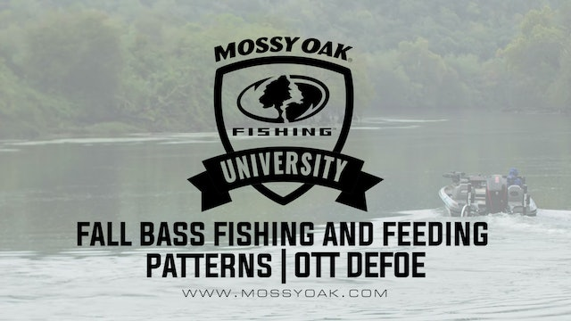 What Do Bass Eat in the Fall - Ott DeFoe Fishing Tips