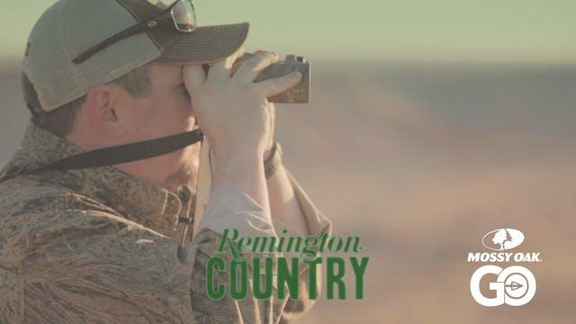 Texas Free – Range Aoudad Sheep • Rem...