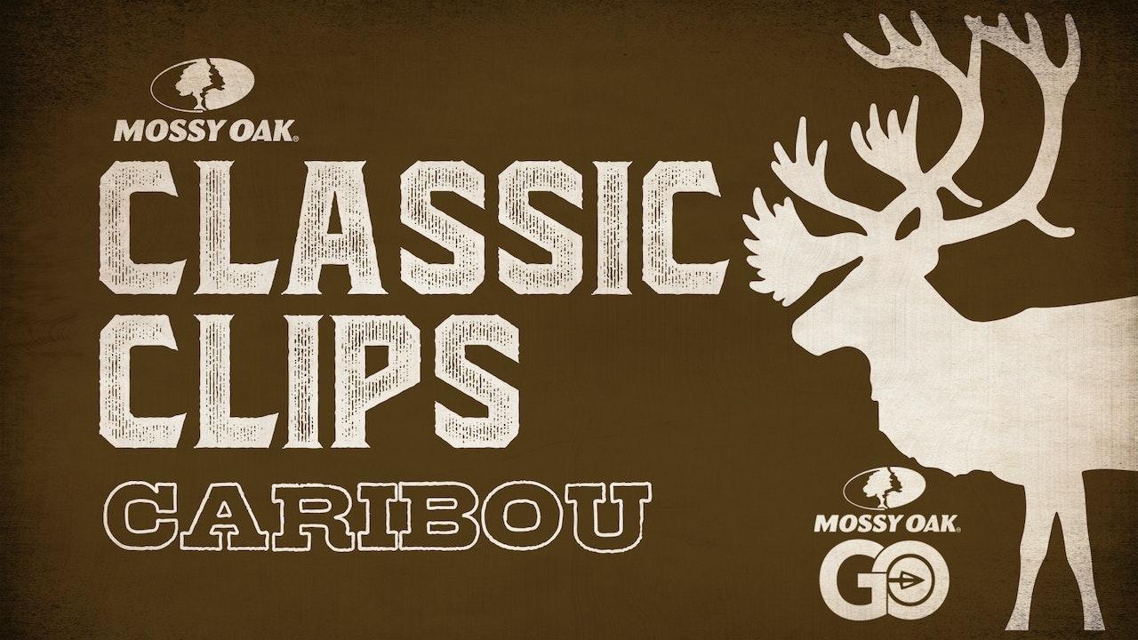 Classic Clips Caribou