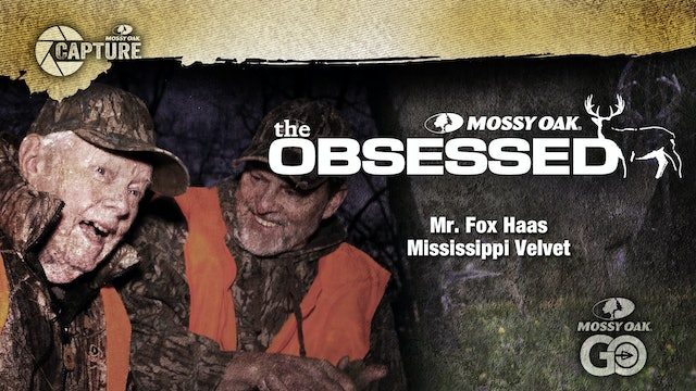 Mississippi Velvet • Mr. Fox Haas
