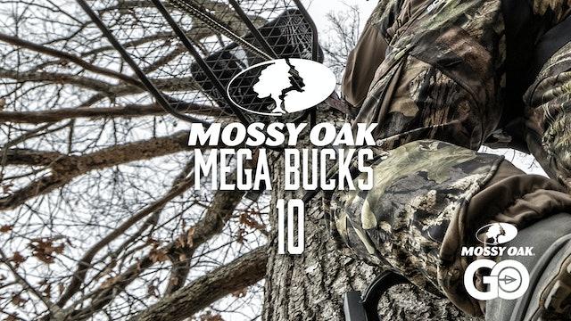 Mega Bucks 10