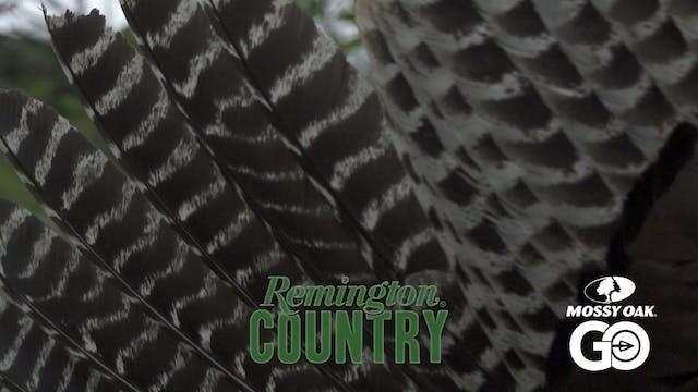 Texas Spurs • Remington Country