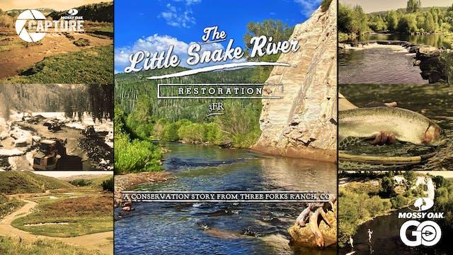 Little Snake River Restoration | Colo...