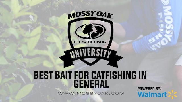 Best Live Bait, Cut Bait, and Homemade Catfish Baits for Catfish Fishing