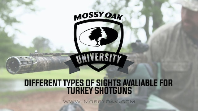 Different Types of Sights Available for Turkey Shotguns