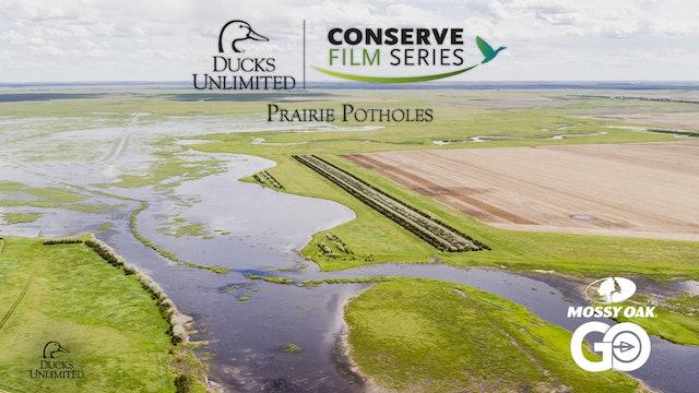 Prairie Potholes • DU Conserve