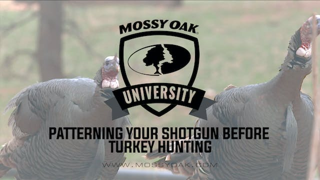 Patterning your Shotgun Before Turkey...