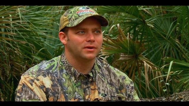 Growing Up In The Field • Turkeys in Florida