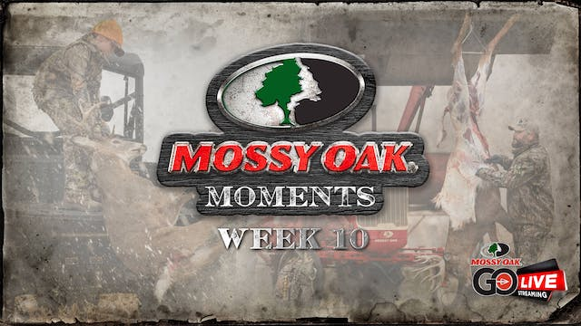 Live: 11.9.2020 Mossy Oak Moments Replay
