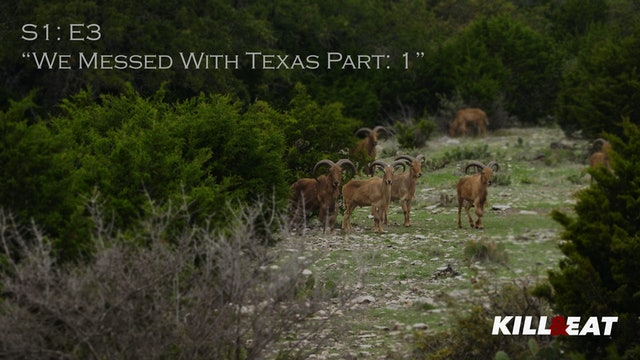 We Messed With Texas Pt. 1 • Kill & Eat