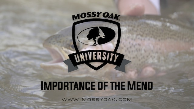 Importance of the Mend • Mossy Oak University