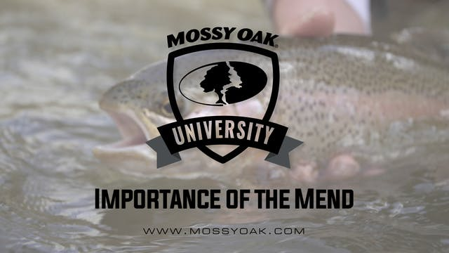 Importance of the Mend • Mossy Oak Un...
