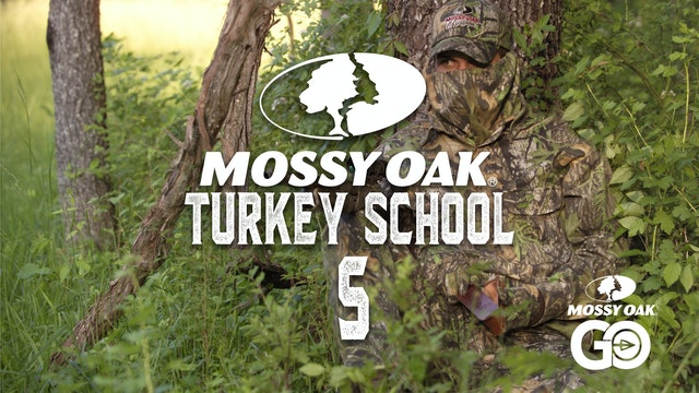 Turkey School 5
