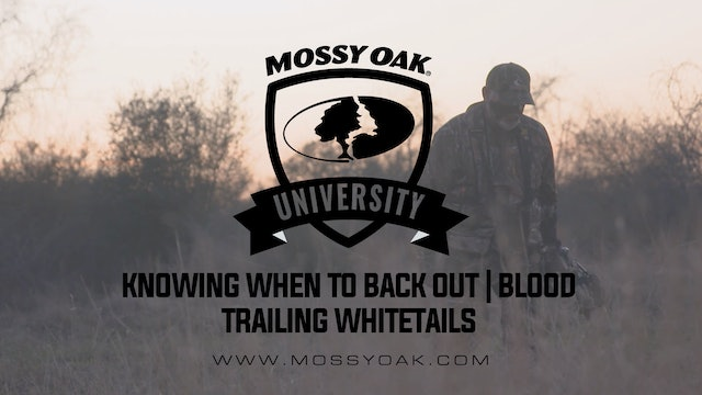 Knowing When to Back Out Blood Trailing Whitetails