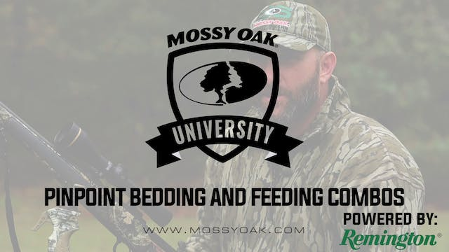 Hunt Where Bed & Food Adjoin • Mossy ...