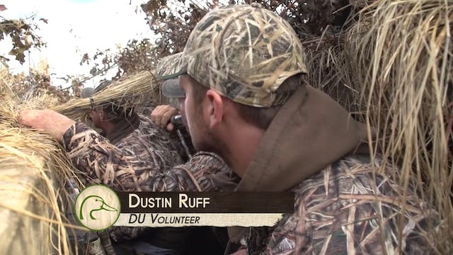 Soggy Waterfowl  Kentucky Public  • D...
